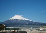 鶴芝の富士