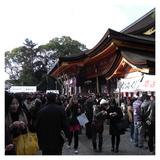 20090105_hatumoude1