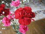 ありがとうの似合う花
