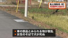 高齢女性と犬が死亡、ひき逃げか 茨城・笠間市