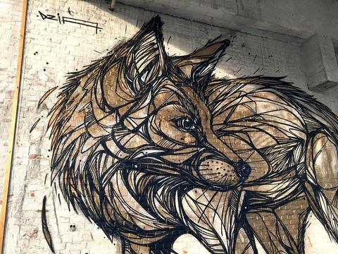 DZIA_FOX_GOLD_2015_01