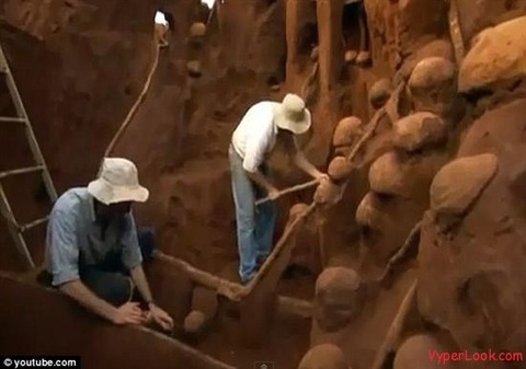 Giant-Ant-Hill-Megalopolis-Discovered-In-Brazil-4