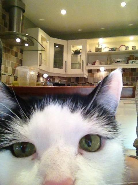 selfie24-620x