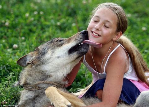packofwolves-11-934x