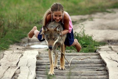 packofwolves-12-934x