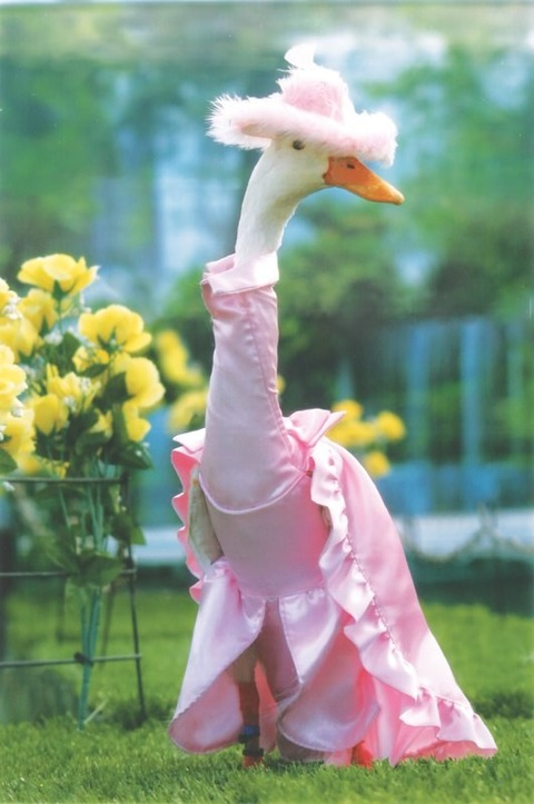 Pink-Duck-620x