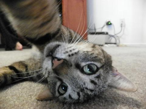 selfie11-934x