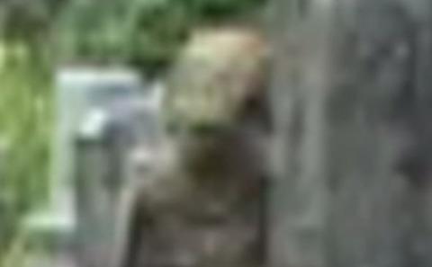 Alien-Face-405378