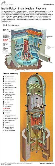 fukushimareactor.jpg