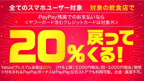 pay1_o