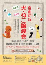 譲渡会ポスター10月ブログ