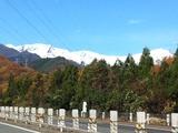 20111123紅葉&雪
