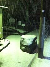 2012123雪