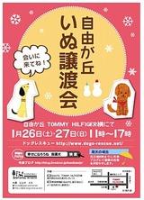 20131ポスター