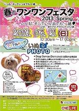 20134月横浜譲渡会