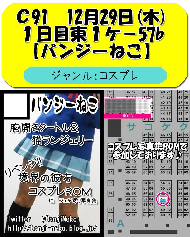 C91_サークルカット_サイト用