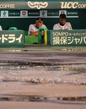 【DeNA】ラミレス監督「雨やんでいるにになぜ?」中止決定に納得いかず