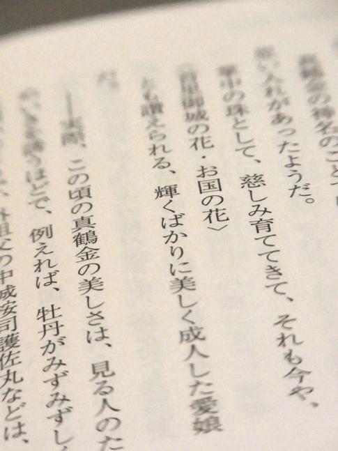 bookmomoto2
