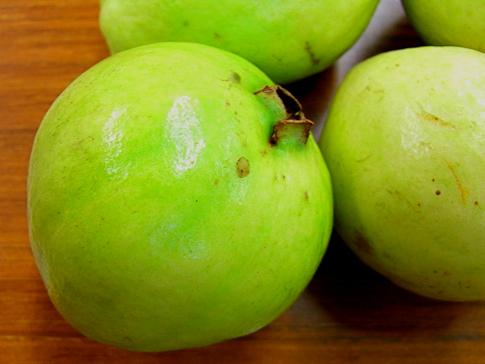 Guava5