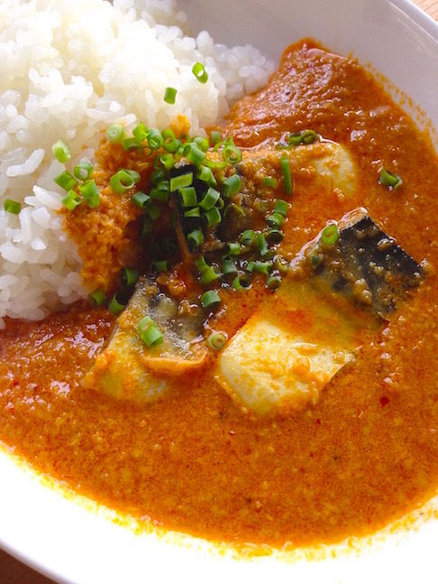 SabaCurry1L485