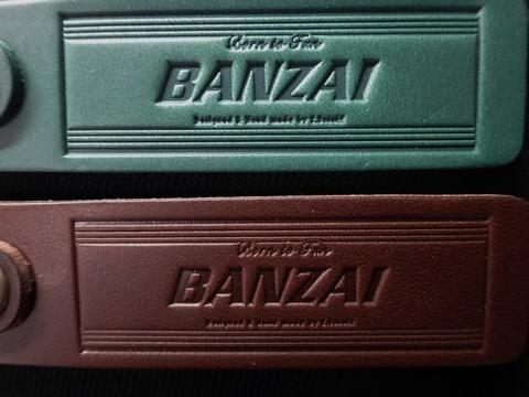 BANZAI_key2