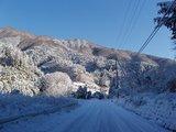 権現山 雪道