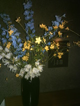 4/26花