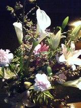 4/10 今週の花