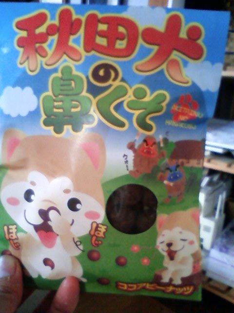 秋田犬の鼻くそ