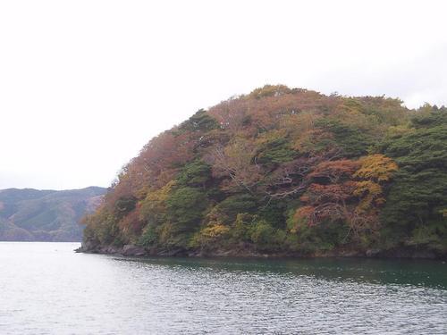 牡鹿の紅葉