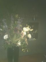 5/31の花