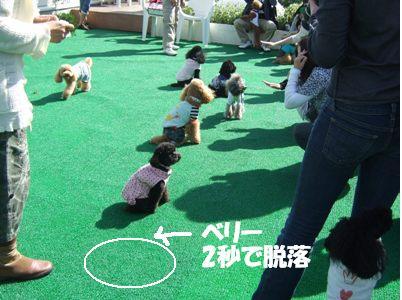 湘南オフ6-2