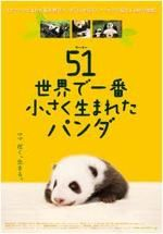 51(ウーイー) 世界で一番小さく生まれたパンダ
