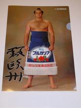 kotooushu_file