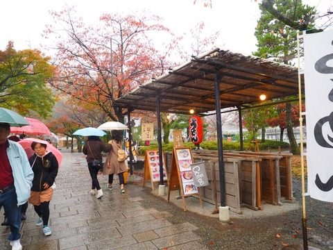 嵐山 (24) (1024x768)