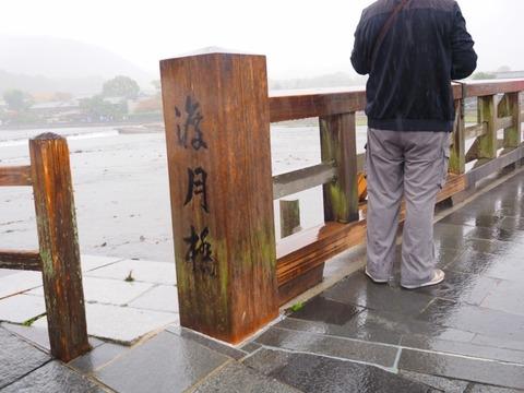 嵐山 (31) (1024x768)