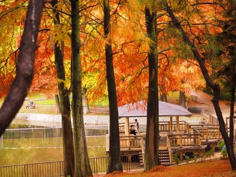 桃山公園 (2) (1024x768)