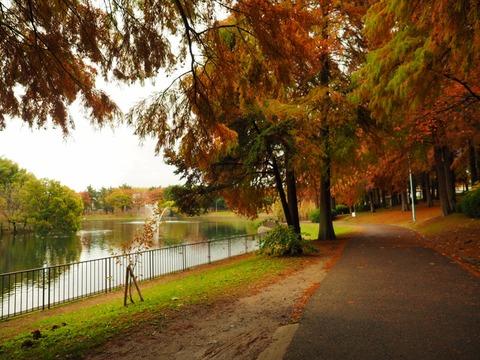 桃山公園 (17) (1024x768)