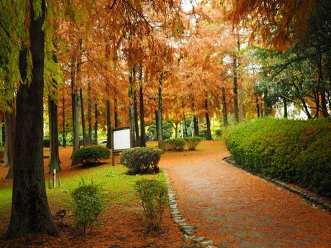 桃山公園 (11) (1024x768)