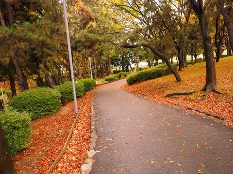 桃山公園 (3) (1024x768)