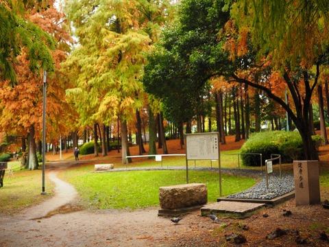 桃山公園 (12) (1024x768)