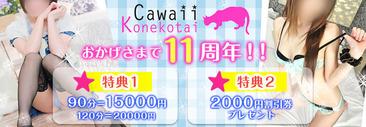 cawaiikonekotai-banner
