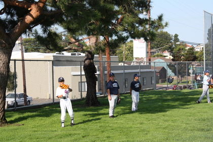baseball-com1-346256