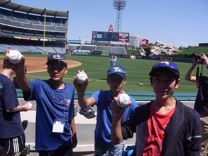 baseball-com1-341101[1]