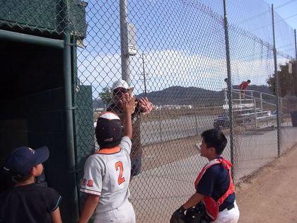 baseball-com1-339984[1]