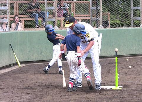 baseball-com-154019