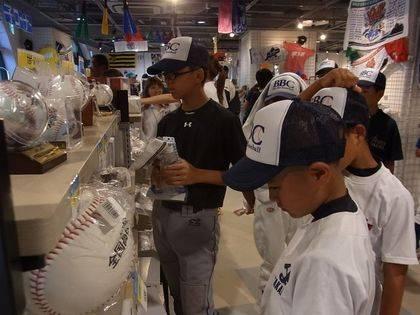 baseball-com-343131