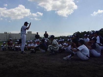 baseball-com-342814