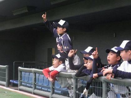 baseball-com-369057