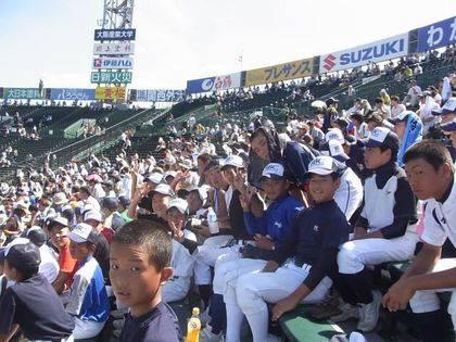 baseball-com-343127